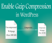 How to Enable Gzip Compression in WordPress via .htaccess file