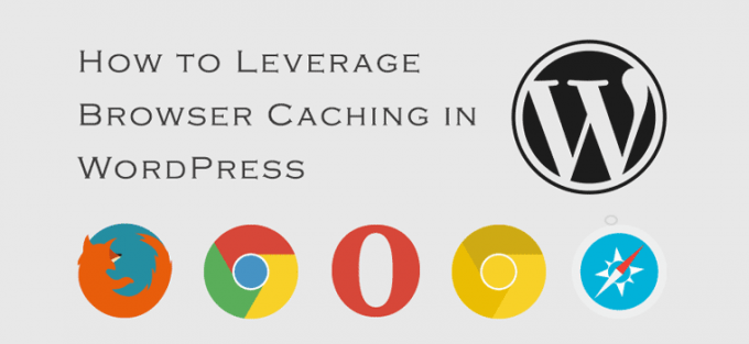 How to Leverage Browser Caching in WordPress {with/without