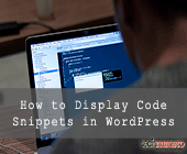 How to Display Code Snippets in WordPress Post or Page