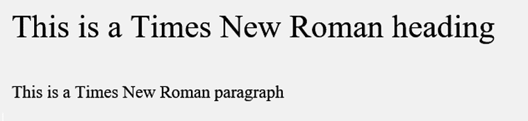 Times New Roman Web Safe Font Visual