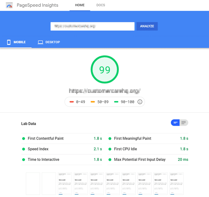 Google PageSpeed Insights Score - Kinsta Hosting